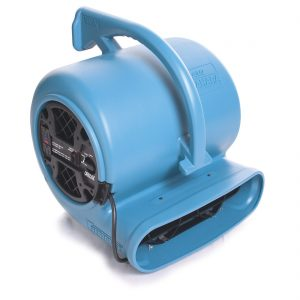 Carpet dryer